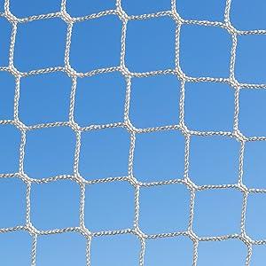 Strong Goal Net