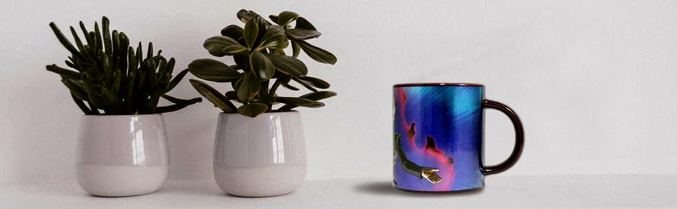 Amazon.com: Just Funky tazas de café: Kitchen & Dining