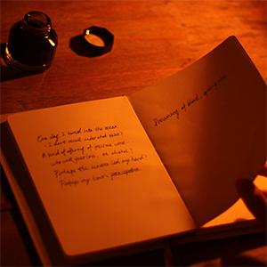 fountain pen journal