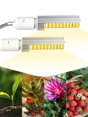 50W led grow lights for indoor plants