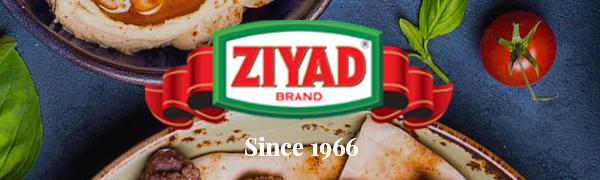 ziyad, logo