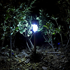 gigalumi solar pathway lights just gives them an extra dressy look that you expected - Solar Pathway Lights