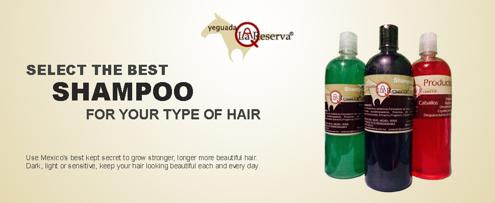 Eliminate the Loss of Hair and Grow New Stronger and Beautiful Hair.