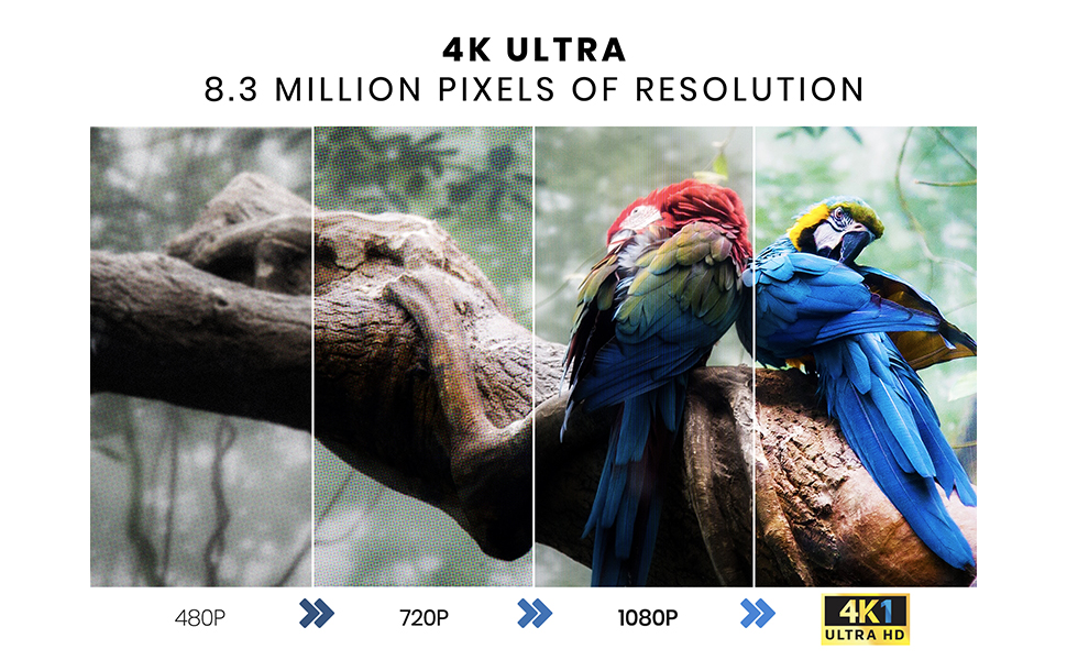 4K Ultra 8.3 Million Pixels of Resolution