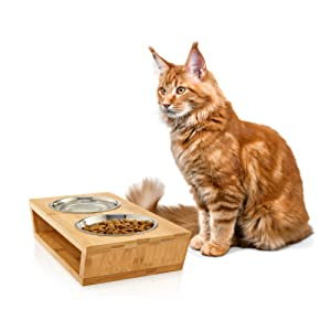 pet feeder bowls for small dogs and cats