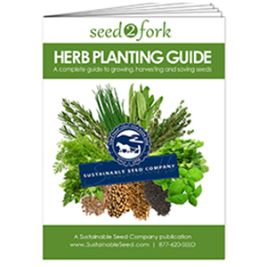 herb-seed herb growing-kit plants thyme dill lavender basil oregano chives cilantro parsley rosemary