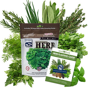 The Culinary Herb Collection Comes With 10 Different Herbs Seed Packets To Spice Up Your Cooking
