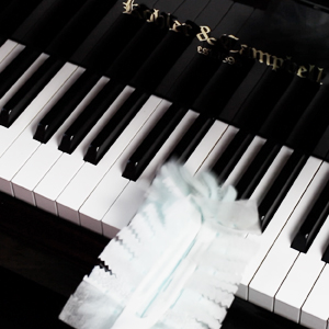 Amazon.com: Best Reusable Color Piano Key Note Keyboard