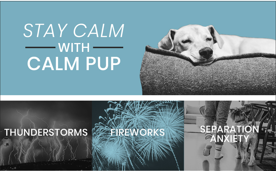 calm pup calming treats for dogs anxiety relief aid hemp oil separation fireworks thunderstorms