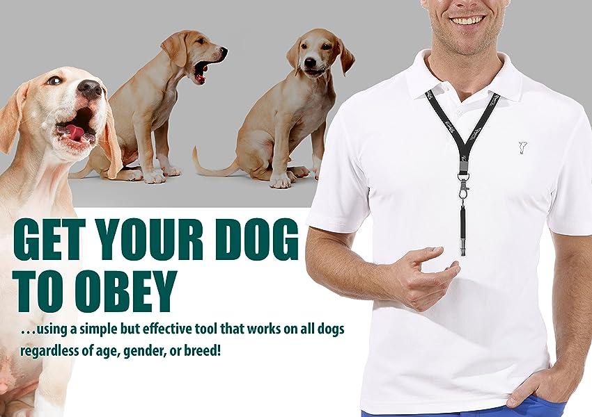 Amazon.com : Ortz Dog Whistle to Stop Barking - [FREE