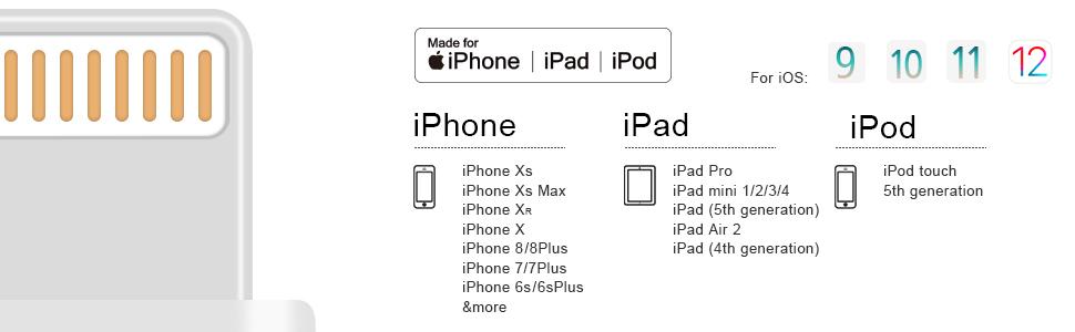 compatibility w/iPhone Xs XsMax XR X 8/8Plus 7/7 Plus 6/6s Plus,iPad mini iPad Air iPad Pro Air pods