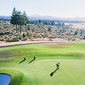 golf course equipment, golf brush, frogger golf brush, best golf brush, golf accessories