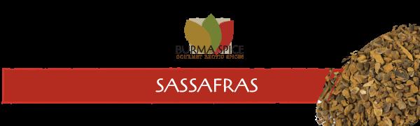 where to buy sassafras