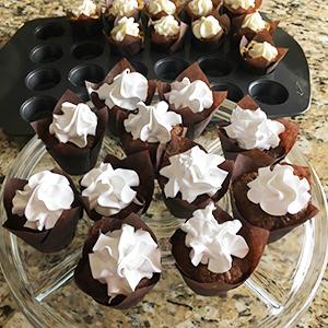 Tulip Cupcake Liners