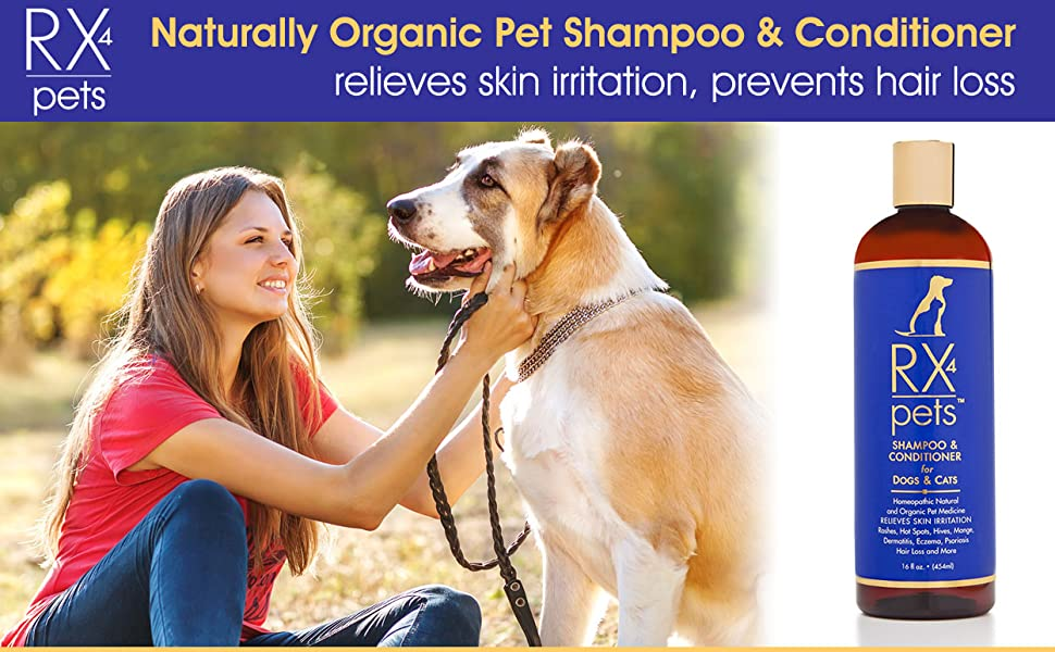 How To Treat Dog Skin Allergies Naturally
