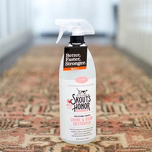 Urine & Odor Destoyer