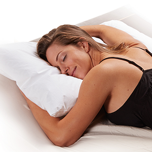 Premium Cotton Terry Pillow Cases