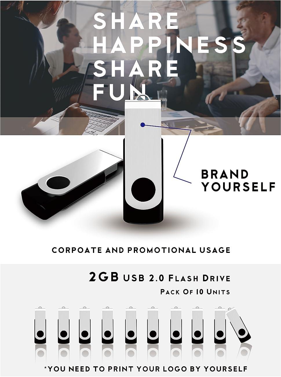 MosDART 10 X 2GB USB20 Bulk Flash Drives Small Capacity Swivel Thumb Jump Drive Memory Stick Zip With Led IndicatorBlack