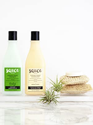 shampoo and conditioner mint coconut haircare