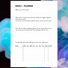 Goal Planner & Undated Daily Planner 2019 - Weekly Planner 2019 Planner, Day Planner 2019 to Improve Productivity, Planners and Organizers for Women ...