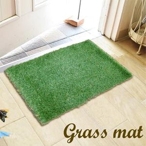grass doormat