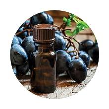 vitis vinifera grape juice extract