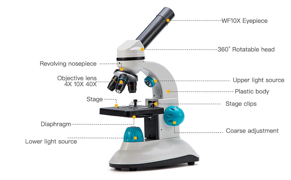 Amazon Com Swift Compound Kids Microscope Sw50 With 40x 400x