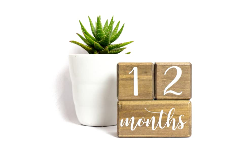 LovelySprouts Solid Wood Milestone Age Blocks Choose from 2 Different Color Stain Options Baby Age Photo Blocks Perfect Baby Shower Gift and Keepsake by Lovelysprouts Natural