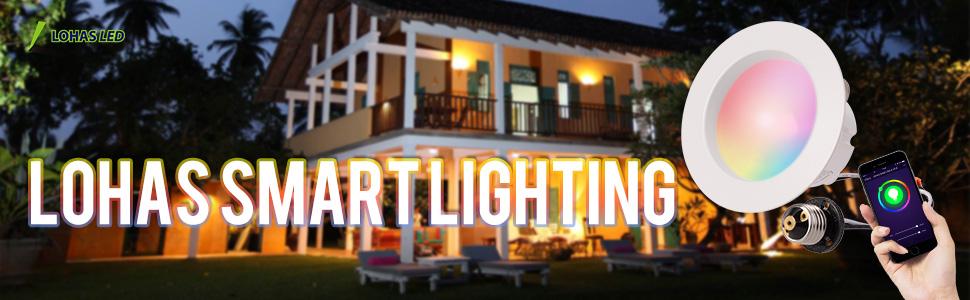 LED Retrofit Downlight Smart