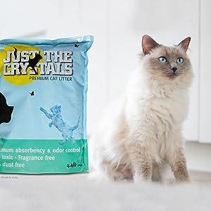 crystal cat litter, scoopfree, scoop free