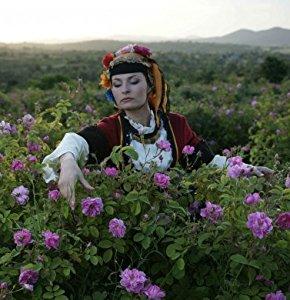 Amazon.com : Alteya Organics Bulgarian Rose Water Toner