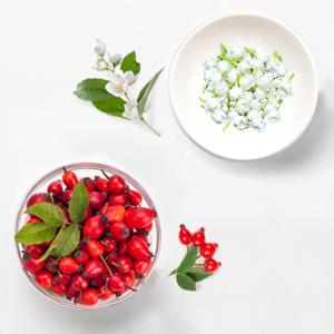 natural herbal treatment