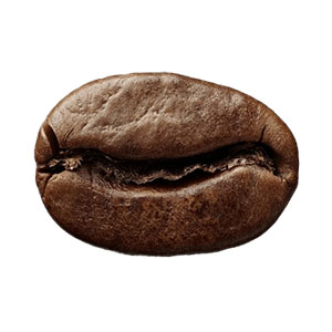 100% arabica premium quality colombian peruvian coffee beans