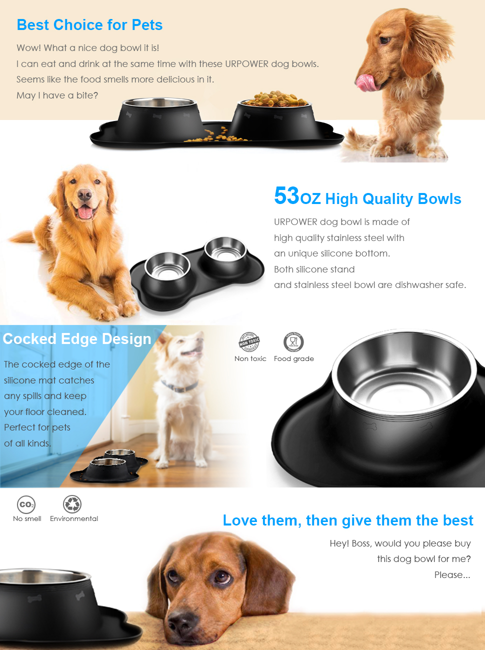 Ssafe To Eat After Dogs Drink From Bowl