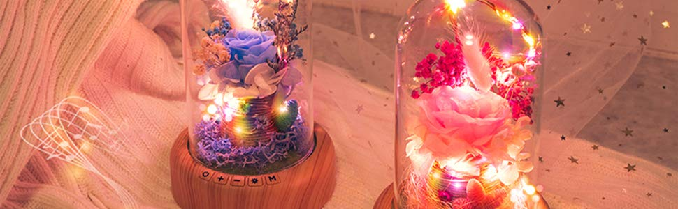 Preserved Flower Beside Lamp with Musical Player