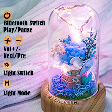 bluetooth forever rose lamp