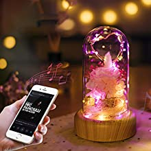 rose lamp with Bluetooth Speaker