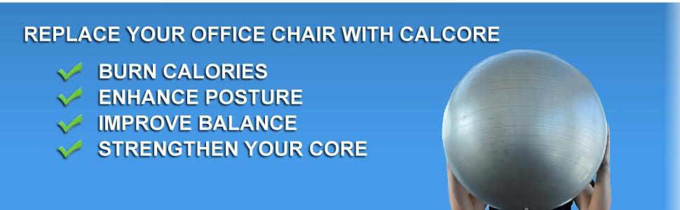 physio ball chair