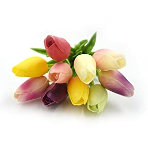 Amazon smylls 10 pcs holland tulips flowers with latex look with all of the sentiments and meanings of tulipstulips is a sure delight enchanting in its beauty and simplicity mightylinksfo