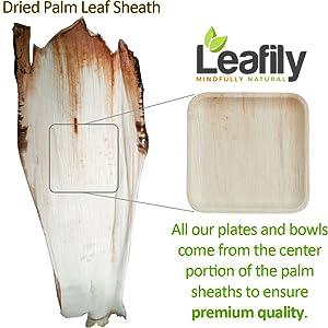 Amazon.com: Plato de hoja de palma de hojas, cuencos y ...