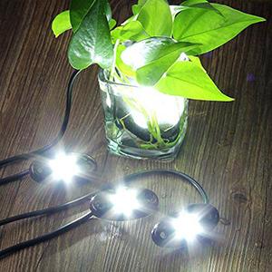 led rock light kit