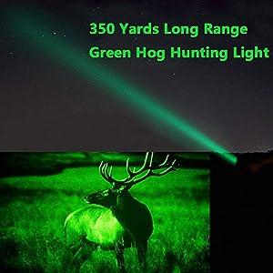 Green Light Beam