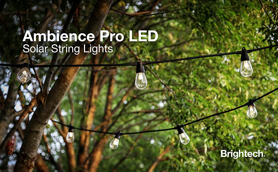 Ambience Pro Led Lights, Solar String Lights, String Lights, Solar lights, ambience lights,