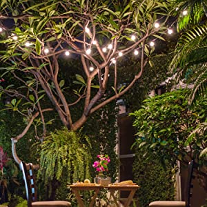 Brightech Ambience Pro Solar Panel, LED Outdoor String Lights