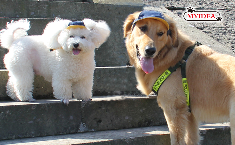 Sun Hats For Dogs Or Cats Cool Shading Effect Shade Your Eyes To Make Them Look Protective Dog Visor