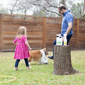 flea tick easy to use spray treatment cedar