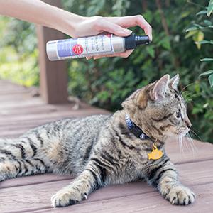 lemongrass wondercide insect bug repellant spray cat dog child safe organic all natural home garden