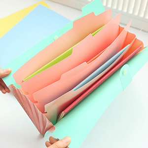 5 pockets file folder