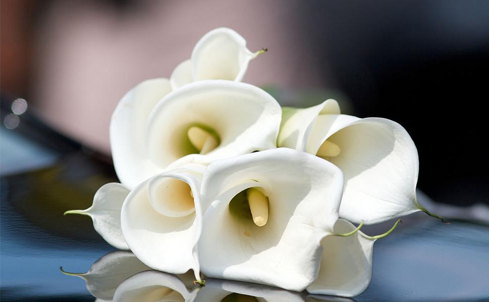 Amazon.com: ATPWONZ 10pcs Calla Lily Artificial Flowers Wedding ...