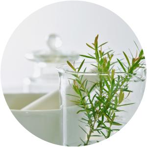 All Natural organic sweet almond oil aloe vera jojoba grapeseed not tested on animals for women men
